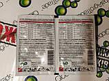 Протравитель зерно, картофель, буряк, рапс, кукуруза, подсолнечник 40шт по 10мл, фото 3