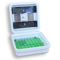 Инкубатор бытовой Рябушка SmartИБ-70/ Інкубатор (70 яиц, аналоговый терморегулятор и механиский переворотом)