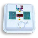 Инкубатор Рябушка / Інкубатор Smart ИБ-48 (48 ЯИЦ, Цифровой , Автоматический, Вентилятор, Керамика), фото 2