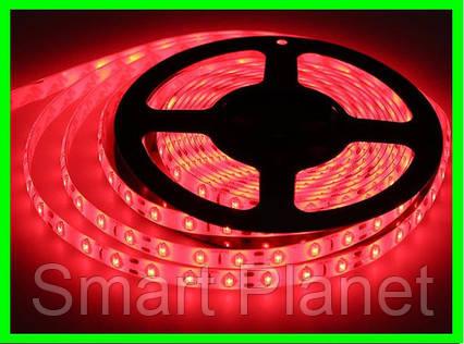 LED Ленты (5050) Red - Красный длинна 5 метров Лед (ВидеоОбзор), фото 2