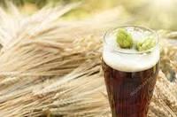 Солод ячмінний світлий пивоварний, фото 1