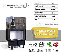Камінна топка DEFRO HOME INTRA SM BL MINI G 10 kW, фото 2