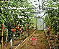 Капельный полив «Грядка 20» для огорода, теплицы, сада., фото 1