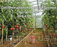 Капельный полив «Грядка 20» для огорода, теплицы, сада.