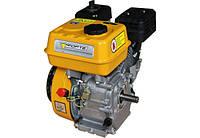 Двигатель бензиновый F210GT-25, фото 1