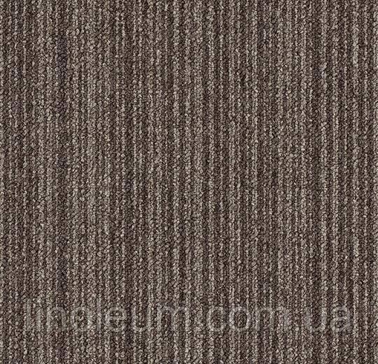 Tessera layout & outline 3101PL colabottle