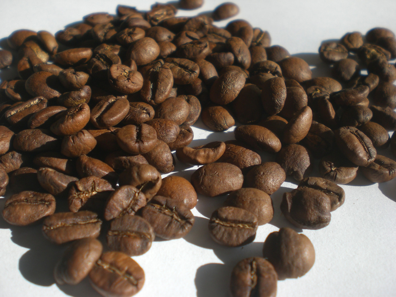 Зерновой свежеобжаренный кофе Арабика Бразилия Желтый Бурбон