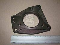 Плита крепления ТНВД ММЗ (СВД-68) Д-245.5S2 (Motorpal) 20009-09