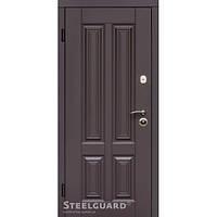Двери входные в дом Steelguard Balta (sale)