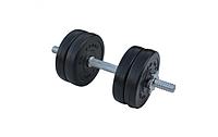 Композитна гантель RN-Sport 6,5 кг з грифом хром