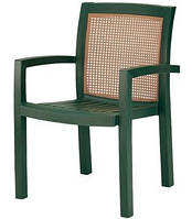 Кресло Papatya Vira зеленое