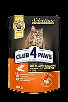 Консерви Клуб 4 лапи для кішок з оселедцем і салакою в соусі, 80 г/24шт