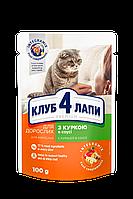 Консерви Клуб 4 лапи для кішок з куркою в соусі, 100 г/24шт