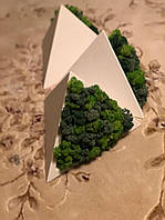 Трикутне гіпсове кашпо з мохом