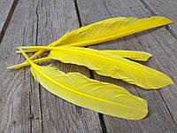 Пір'я жовте для декору, 5 шт/уп., розмір 20-30 см., 30 грн., фото 1