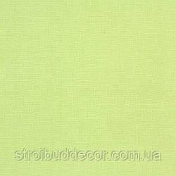 Щільні паперові шпалери 0,53*10,05 Еко однотонні зелені