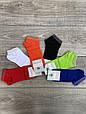 Жіночі шкарпетки патіки бавовна Montebello однотонні з люрексом 35-40 12 шт в уп мікс 6 кольорів, фото 2