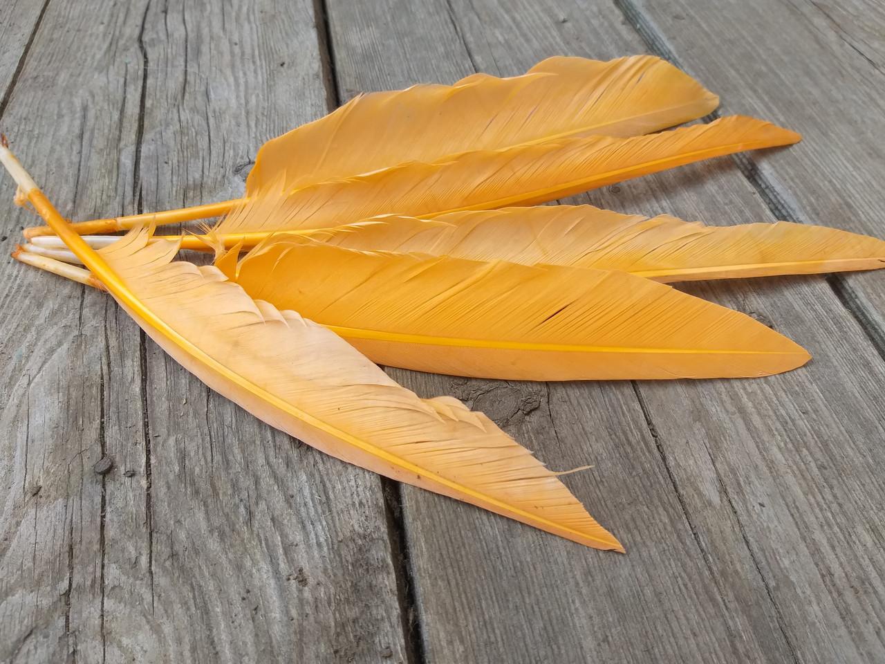 Перо помаранчеве для декору, 5 шт/уп., розмір від 20 до 30 см, 30 грн