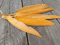 Перо помаранчеве для декору, 5 шт/уп., розмір від 20 до 30 см, 30 грн, фото 1