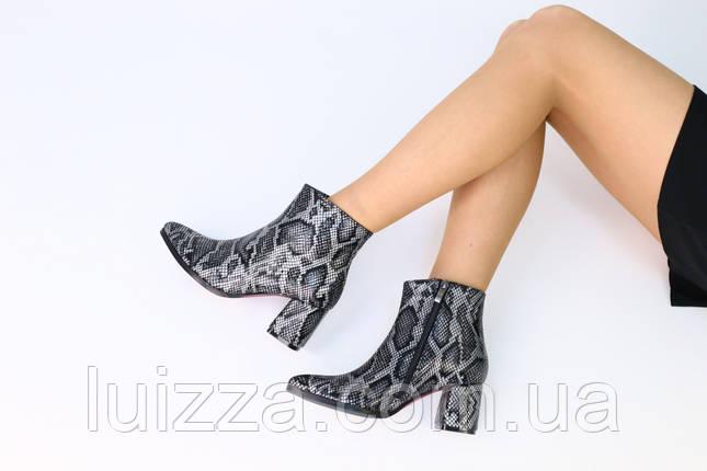 Демисезонные женские ботинки кожа рептилия с обтянутым каблуком, фото 2