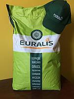 Семена подсолнечника под Евролайтнинг Clearfield Евралис Генералис Euralis Generalis КЛ Пончо