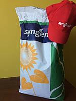 Семена гибрида подсолнечника Сингента Алькантара гибрид подсолнечника по классику Syngenta Alcantara