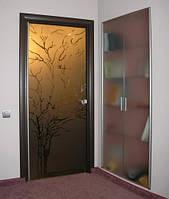 Межкомнатные двери из тонированного стекла с рисунком