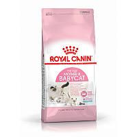 Корм Роял Канин Мазе Энд Бебикэт Royal Canin Mother Babycat для кормящих кошек и котят 10 кг