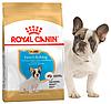 Корм Роял Канин Французкий Бульдог Юниор Royal Canin French Bulldog junior породный для щенков 1 кг
