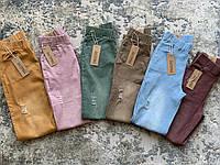Рваные яркие женские джеггинсы джинсы Ласточка демисезонные (НОРМА) с потертостями