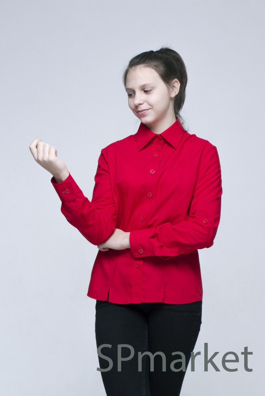 Классическая блузка с рукавом (красная)