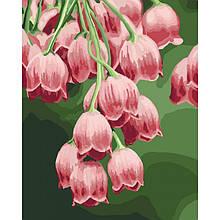 Картина по номерам Идейка - Замечательные колокольчики 40x50 см (КНО3040)