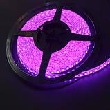 Светодиодная лента 12В 3528(120LED/м) IP65 розовая, фото 3