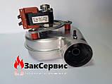 Вентилятор на газовый котел Ferroli Domicompact DOMIproject F24 39817550 39817551, фото 7