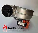 Вентилятор на газовый котел Ferroli Domicompact DOMIproject F24 39817550 39817551, фото 5