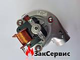 Вентилятор на газовый котел Ferroli Domicompact DOMIproject F24 39817550 39817551, фото 8