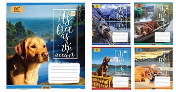 Зошит 48арк. лін. YES Dogs&Water №762095(10)(200)
