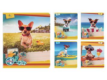 """Зошит 12арк. лін. карт.обкл. """"Собаки на пляжі"""" №16279/Поділля/(25)(500)"""