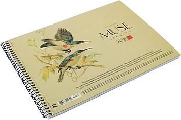 """Альбом для малюв. на пруж. 30арк. A4 """"Muse"""" крафт-картон №PB-SC-030-163/Школярик/(1)(36)"""
