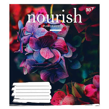Зошит 60арк. кліт. YES Nourish №764168(10)(160)