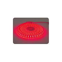 Лента светодиодная Horoz Electric COLORADO 50м влагозащищенная красный свет