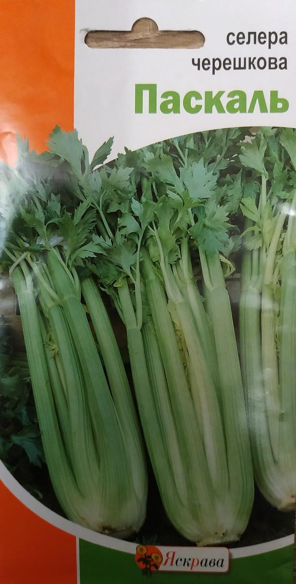 Семена сельдерея черешкового Паскаль 0.5 гр, Яскрава