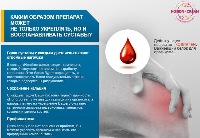 как действует Hondrocream