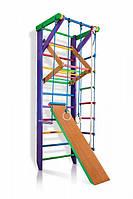 Детский деревянный спортивный комплекс для дома SportBaby Разноцветный (Карусель 3-240)