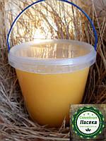 Мёд подсолнух натуральный 1литр