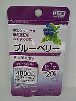 Черника для здоровья глаз Япония, фото 1