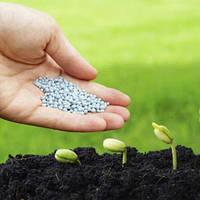 Семена и удобрения
