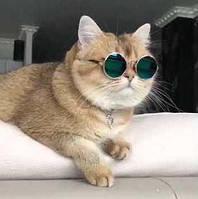 Солнцезащитные очки SUNROZ для кошек и собак, круглые Retro разноцвет