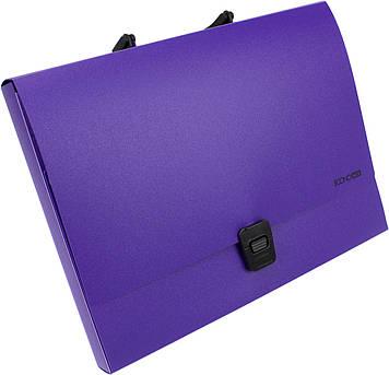 """Портфель """"Economix"""" №E31607-12 A4 пласт. на застібці (фіолетовий)(1)(6)"""