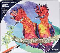 """Олівці кольор. 24 кольор. """"Kite"""" №K18-1053 аквар. в метал. пеналі(6)"""